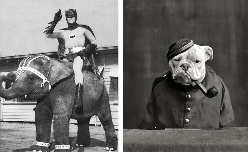 photos-anciennes-bizarres
