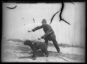 10-photos-anciennes-patrouille-chien-police-port-Antwerp