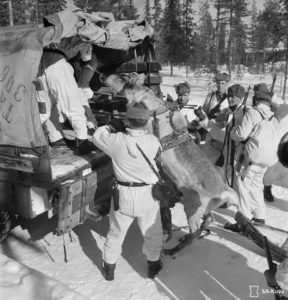 30-photos-anciennes-soldat-finlande-renne-camion-884x920